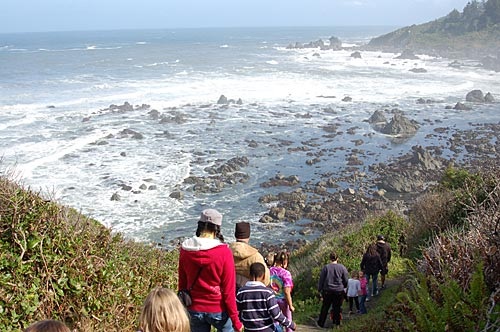 Photo of students, teachers and parents walking down a trail to the tide pools. A vast craggy beach and ocean view is visible.